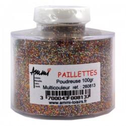 1 pot de paillettes multicolore de 100gr