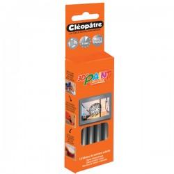Boîte de 12 bâtons de peinture colorée argent Cléo'STICK 3D Paint