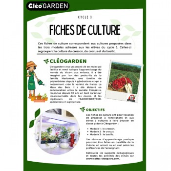 Fiches de culture - Cycle 3